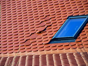 Damaged Skylight & Roof Leak Repair in Northeast New Jersey